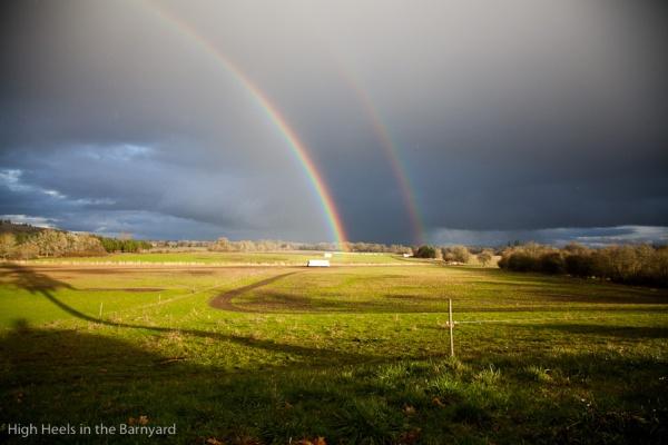 Afton Field Farm